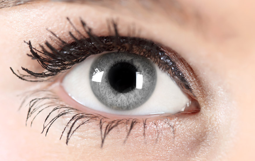 makeup grey eyes