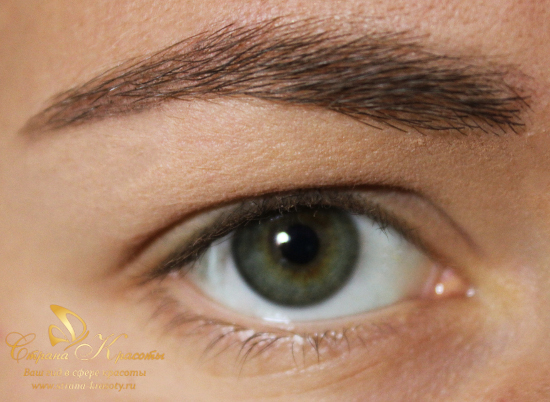 Makeup for green eyes - the right a master class with a photo of several technologies for applying