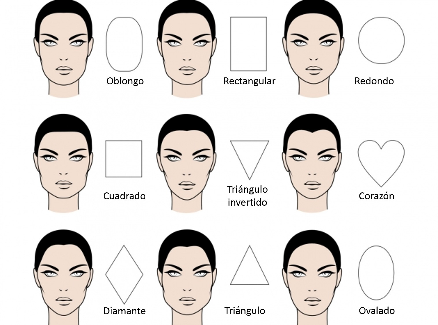 Shapes and types of face of the woman